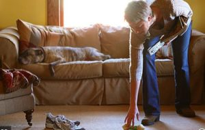 Six Tricks to Make Your Apartment Cleaner and Safer