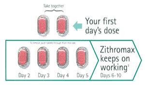 Zithromax Dosage Cats Z Pak